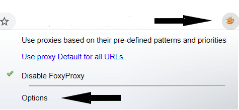 Setting up proxies with FoxyProxy: click on logo